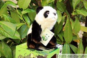 Panda WWF - St Mamet